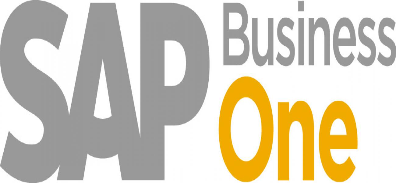 Sap Business One Selatan